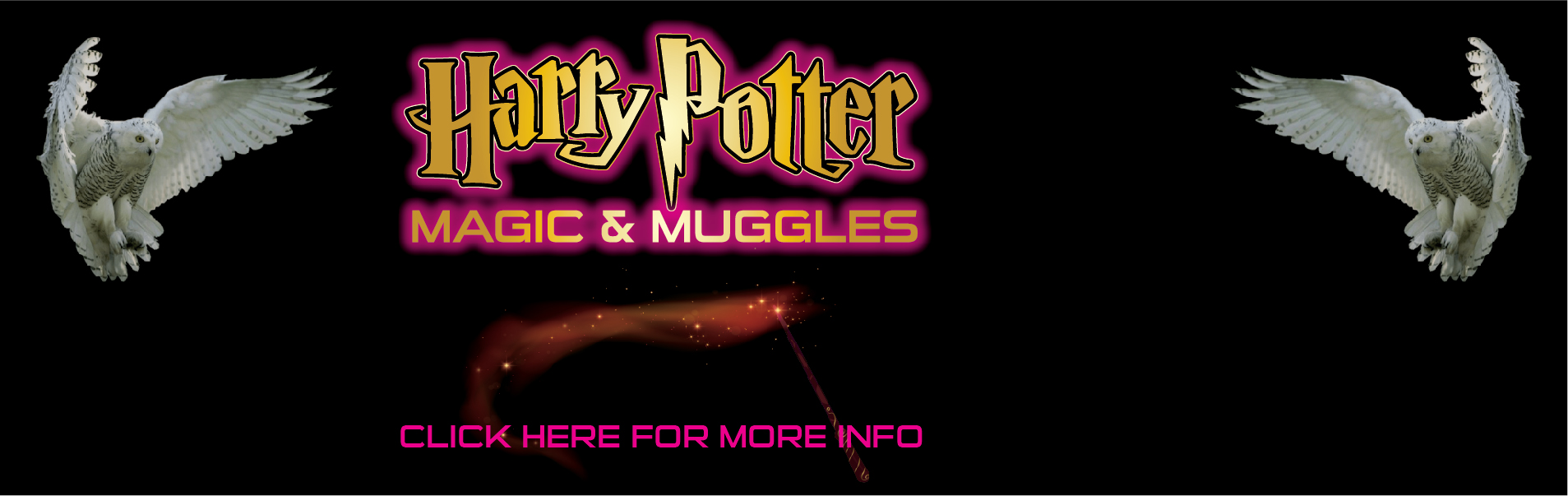 AT-HARRY-POTTER-MAGIC-MUGGLES
